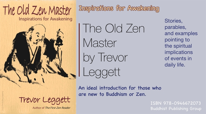 The Old Zen Master by Trevor Leggett